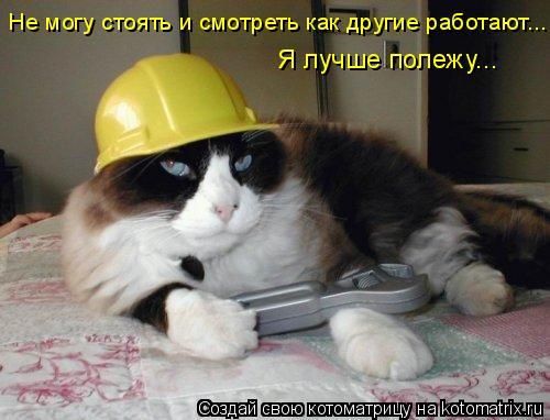 Котоматрица: Не могу стоять и смотреть как другие работают... Я лучше полежу...