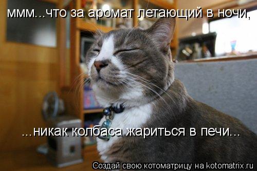 Котоматрица: ммм...что за аромат летающий в ночи, ...никак колбаса жариться в печи...