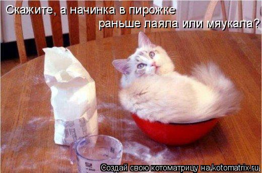 Котоматрица: Скажите, а начинка в пирожке раньше лаяла или мяукала?
