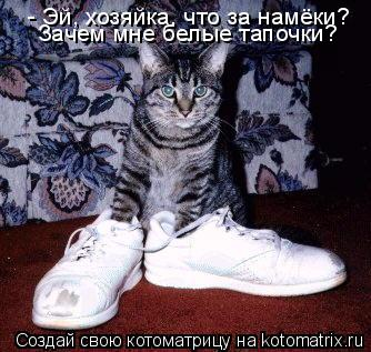Котоматрица: - Эй, хозяйка, что за намёки? Зачем мне белые тапочки?