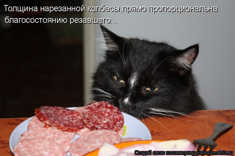 Котоматрица: Толщина нарезанной колбасы,прямо пропорциональна благосостоянию резавшего...