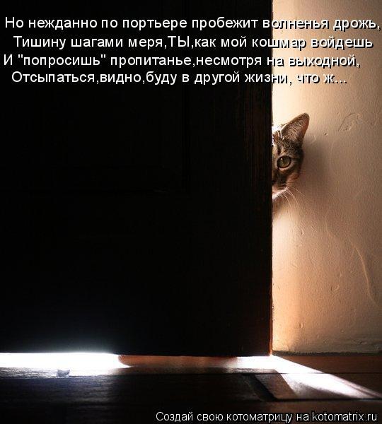 """Котоматрица: Но нежданно по портьере пробежит волненья дрожь, Тишину шагами меря,ТЫ,как мой кошмар войдешь И """"попросишь"""" пропитанье,несмотря на выходной"""