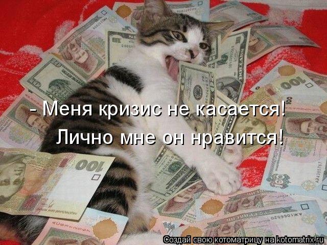 Котоматрица: - Меня кризис не касается! Лично мне он нравится!