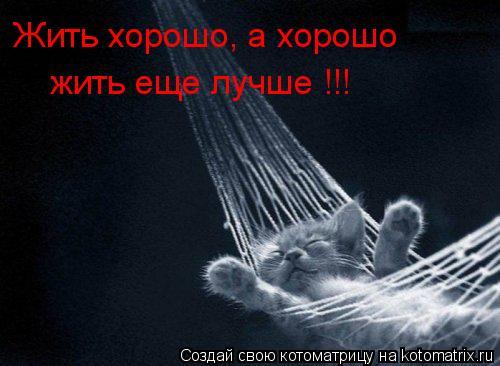 Котоматрица: Жить хорошо, а хорошо  жить еще лучше !!!