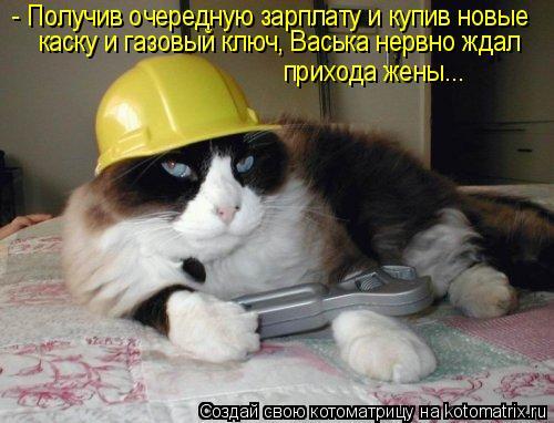 Котоматрица: - Получив очередную зарплату и купив новые  каску и газовый ключ, Васька нервно ждал прихода жены...