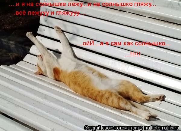 Котоматрица: ....и я на солнышке лежу...и на солнышко гляжу... ..всё лежууу и гляжууу.... ...ойЙ...а я сам как солнышко... ...!!!!!