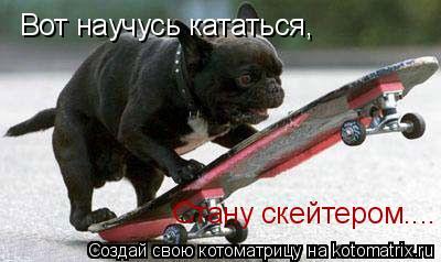 Котоматрица: Вот научусь кататься, Стану скейтером....