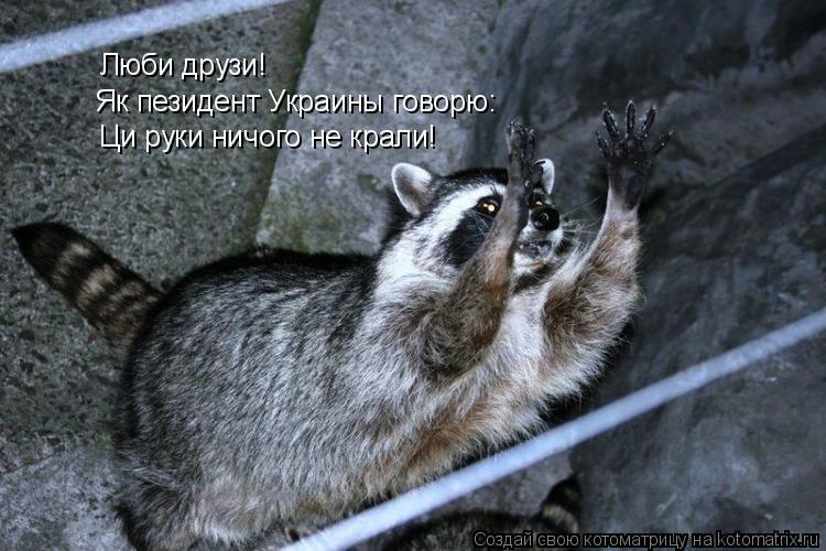 Котоматрица: Люби друзи! Як пезидент Украины говорю: Ци руки ничого не крали!