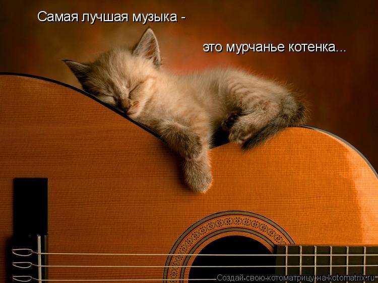 Котоматрица: Самая лучшая музыка - это мурчанье котенка...