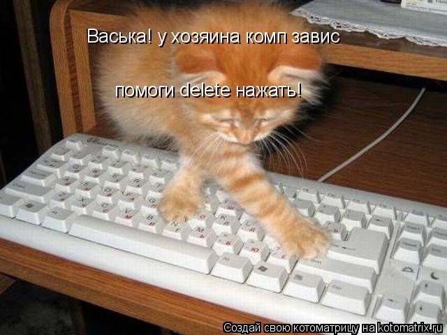 Котоматрица: Васька! у хозяина комп завис помоги delete нажать!