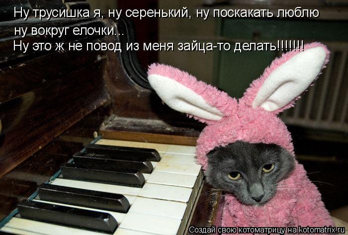 Котоматрица: Ну трусишка я, ну серенький, ну поскакать люблю ну вокруг елочки... Ну это ж не повод из меня зайца-то делать!!!!!!!