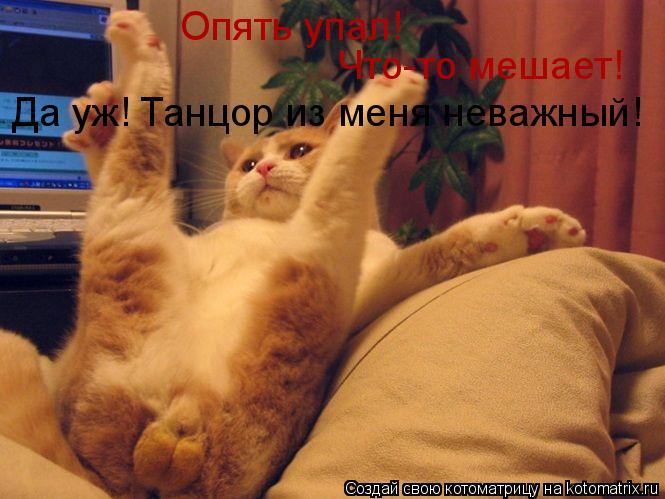 Котоматрица: Опять упал! Что-то мешает! Да уж! Танцор из меня неважный!