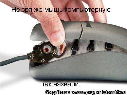 Котоматрица: Не зря же мышь компьютерную  так назвали.