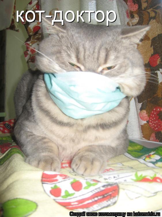 Котоматрица: кот-доктор
