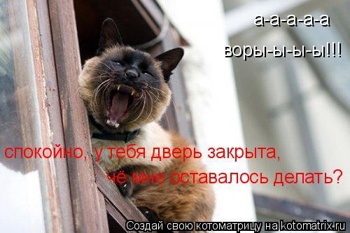 Котоматрица: а-а-а-а-а воры-ы-ы-ы!!! спокойно, у тебя дверь закрыта,  чё мне оставалось делать?