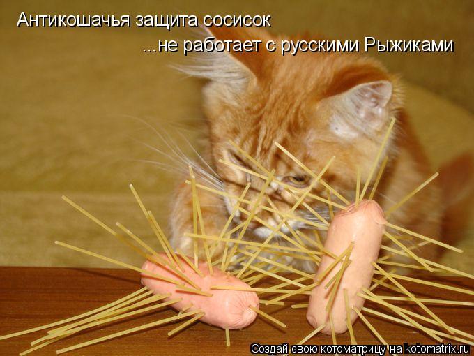 Котоматрица: Антикошачья защита сосисок ...не работает с русскими Рыжиками
