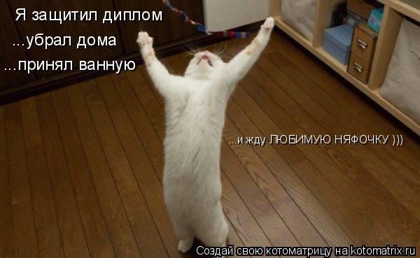 Котоматрица: Я защитил диплом ...убрал дома ...принял ванную ...и жду ЛЮБИМУЮ НЯФОЧКУ )))