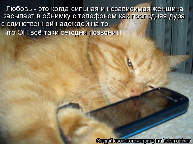 Котоматрица: Любовь - это когда сильная и независимая женщина засыпает в обнимку с телефоном как последняя дура с единственной надеждой на то, что ОН всё