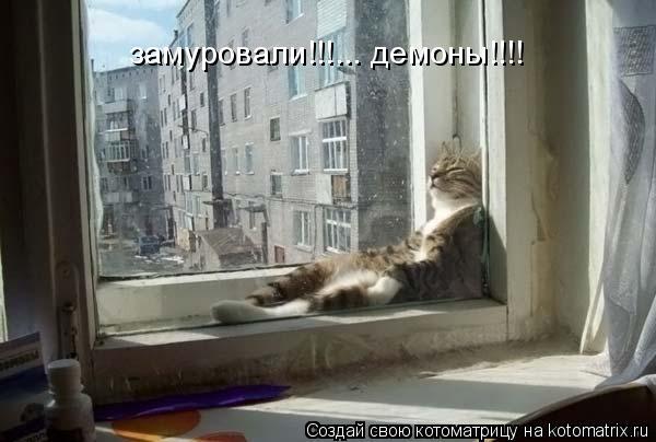 Котоматрица: замуровали!!!... демоны!!!!