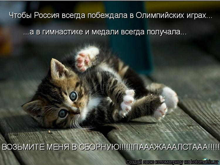 Котоматрица: Чтобы Россия всегда побеждала в Олимпийских играх... ...а в гимнастике и медали всегда получала... ВОЗЬМИТЕ МЕНЯ В СБОРНУЮ!!!!!!ПАААЖАААЛСТААА!!!