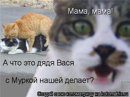 Котоматрица: Мама, мама! А что это дядя Вася с Муркой нашей делает?