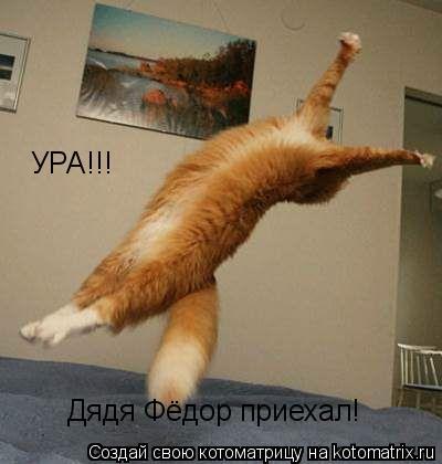 Котоматрица: УРА!!! Дядя Фёдор приехал!