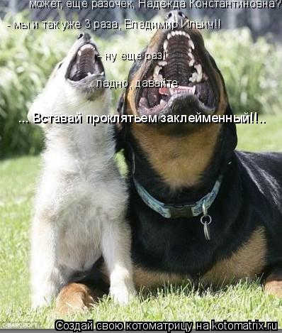 Котоматрица: может, еще разочек, Надежда Константиновна? - мы и так уже 3 раза, Владимир Ильич!! - ну еще раз! .. ладно, давайте ... Вставай проклятьем заклейме