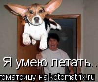Котоматрица: Я умею летать......