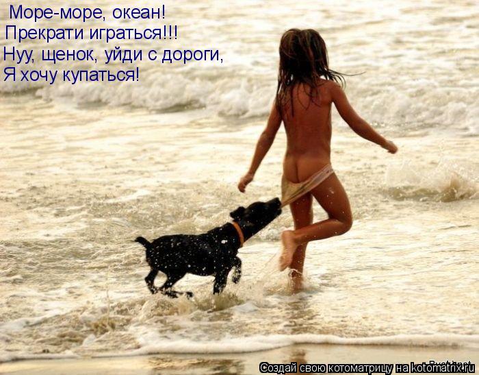 Котоматрица: Море-море, океан! Прекрати играться!!! Нуу, щенок, уйди с дороги, Я хочу купаться!