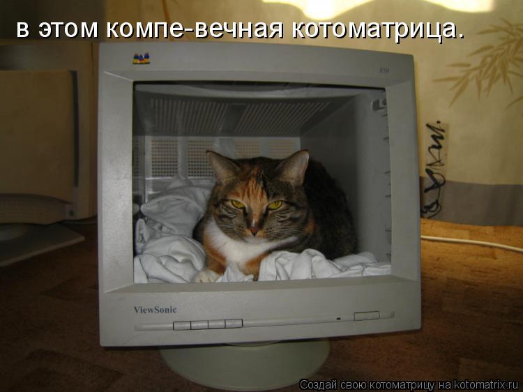 Котоматрица: в этом компе-вечная котоматрица.