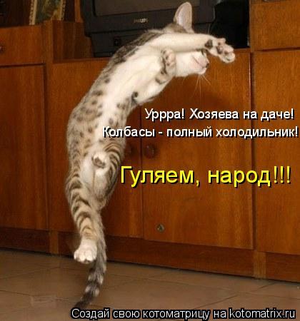 Котоматрица: Уррра! Хозяева на даче! Колбасы - полный холодильник! Гуляем, народ!!!