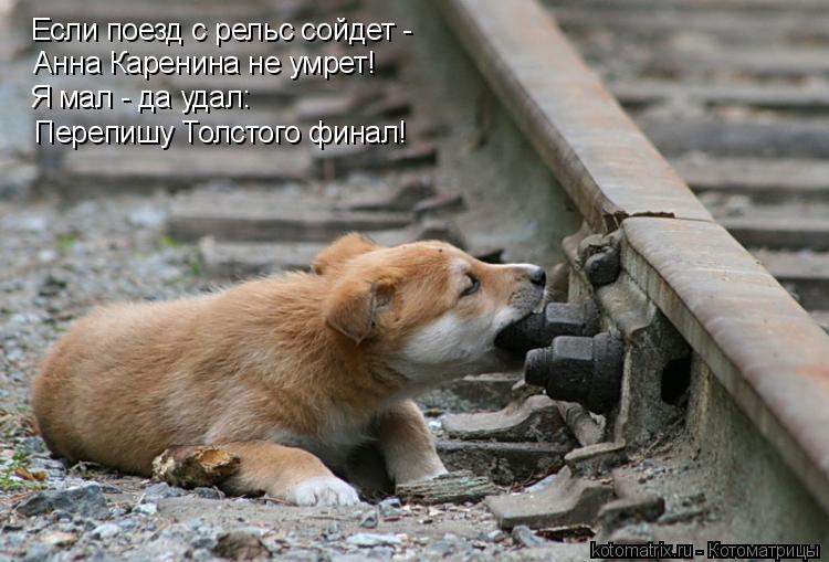 Котоматрица: Если поезд с рельс сойдет - Анна Каренина не умрет! Я мал - да удал: Перепишу Толстого финал!