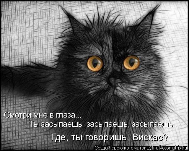 Котоматрица: Смотри мне в глаза... Ты засыпаешь, засыпаешь, засыпаешь... Где, ты говоришь, Вискас?