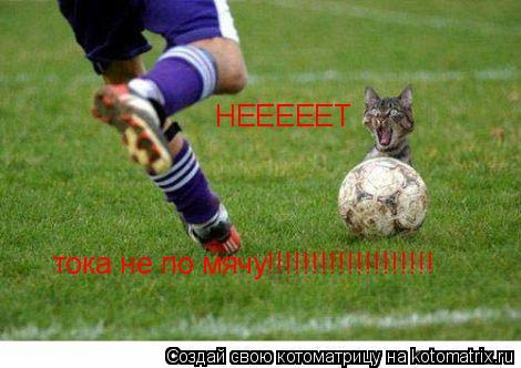 Котоматрица: НЕЕЕЕЕТ тока не по мячу!!!!!!!!!!!!!!!!!!!