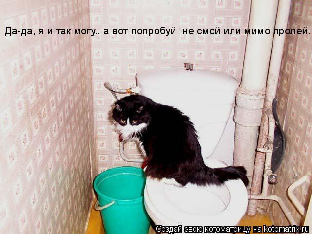 Котоматрица: Да-да, я и так могу.. а вот попробуй  не смой или мимо пролей....
