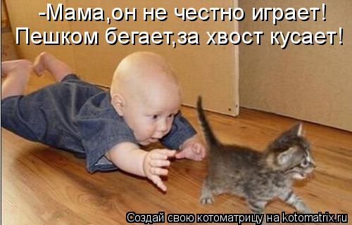 Котоматрица: -Мама,он не честно играет! Пешком бегает,за хвост кусает!