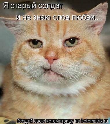 Котоматрица: Я старый солдат и не знаю слов любви....