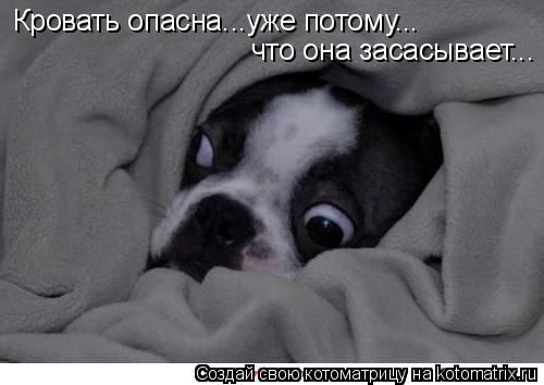 Котоматрица: Кровать опасна...уже потому... что она засасывает...