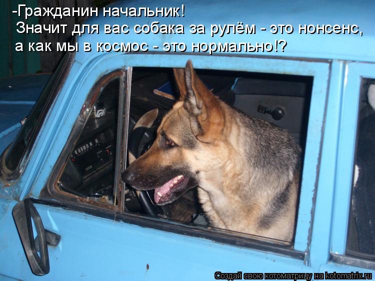 Котоматрица: -Гражданин начальник!  Значит для вас собака за рулём - это нонсенс, а как мы в космос - это нормально!?