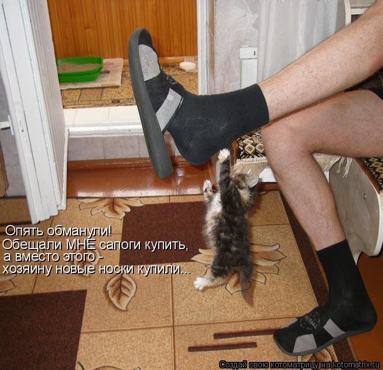 Котоматрица: Опять обманули! Обещали МНЕ сапоги купить, а вместо этого - хозяину новые носки купили...