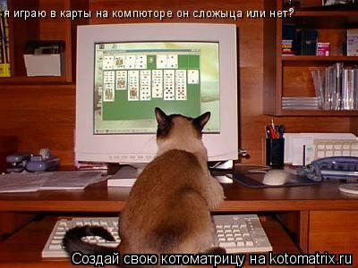 Котоматрица: я играю в карты на компюторе он сложыца или нет?