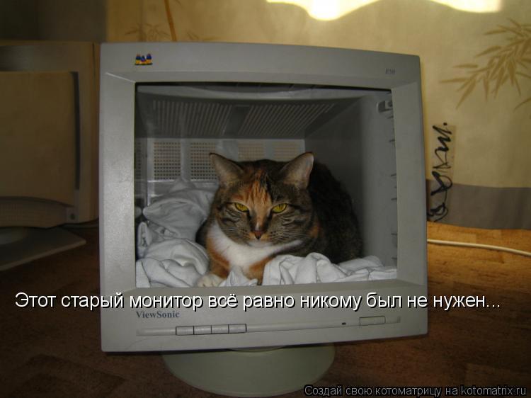 Котоматрица: Этот старый монитор всё равно никому был не нужен...