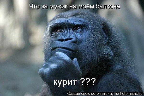 http://kotomatrix.ru/images/lolz/2009/06/26/oi.jpg