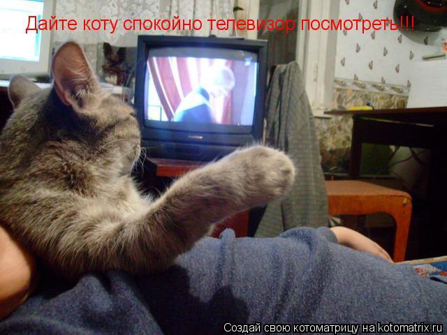 Котоматрица: Дайте коту спокойно телевизор посмотреть!!!