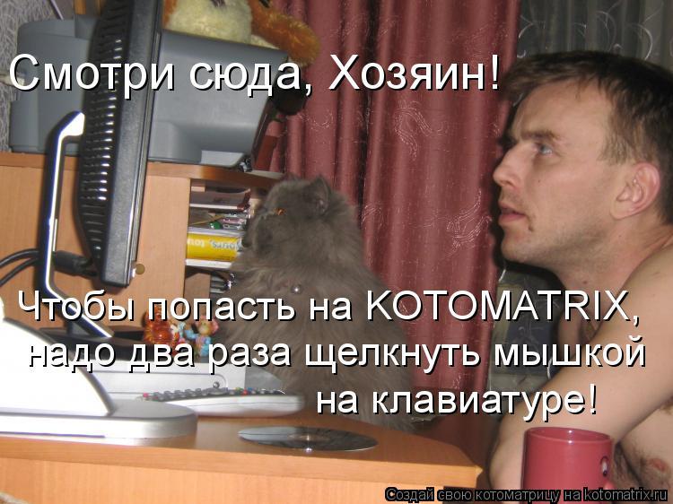 Котоматрица: Смотри сюда, Хозяин!  Чтобы попасть на KOTOMATRIX, надо два раза щелкнуть мышкой  на клавиатуре!