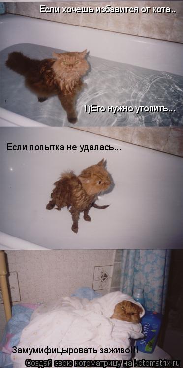 Котоматрица: Если хочешь избавится от кота.. 1)Его нужно утопить... Если попытка не удалась... Замумифицыровать заживо!!!