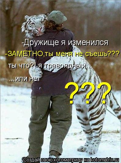 Котоматрица: -Дружище я изменился  -ЗАМЕТНО,ты меня не съешь??? ты что?! я травоядный... ...или нет ???