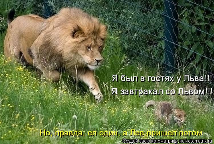 Котоматрица: Я был в гостях у Льва!!! Я завтракал со Львом!!! Но, правда, ел один, а Лев пришел потом