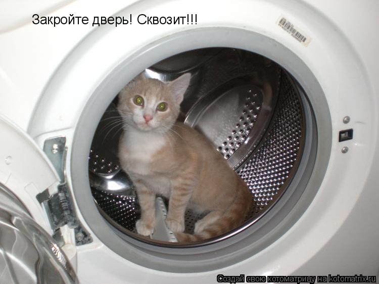 Котоматрица: Закройте дверь! Сквозит!!!