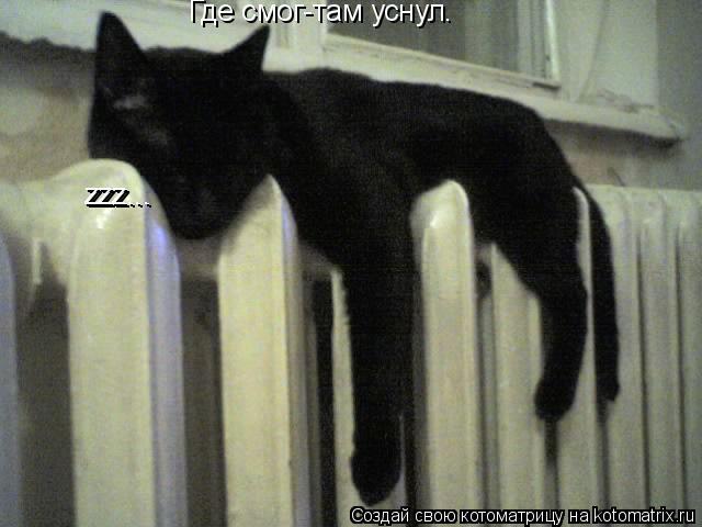 Котоматрица: Где смог-там уснул. zzz... zzz...